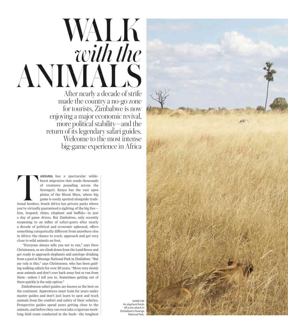WSJ. Magazine – Walk with the Animals